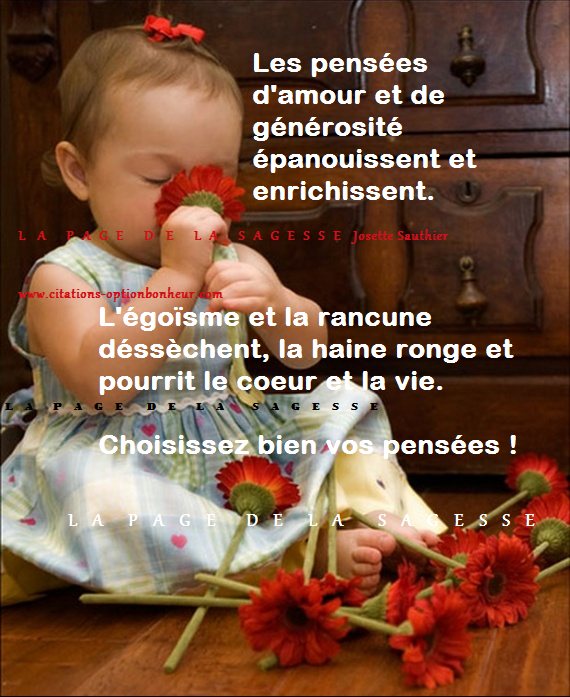 citations option bonheur  citation sur les pens u00e9es positives