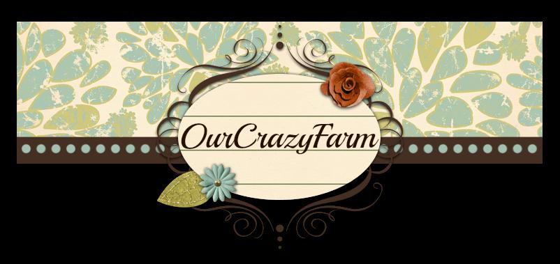 OurCrazyFarm