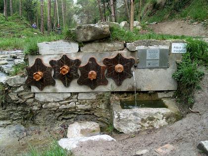 La Font del Puig