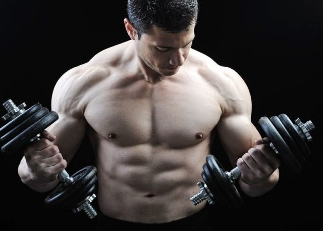 Build Muscle Size