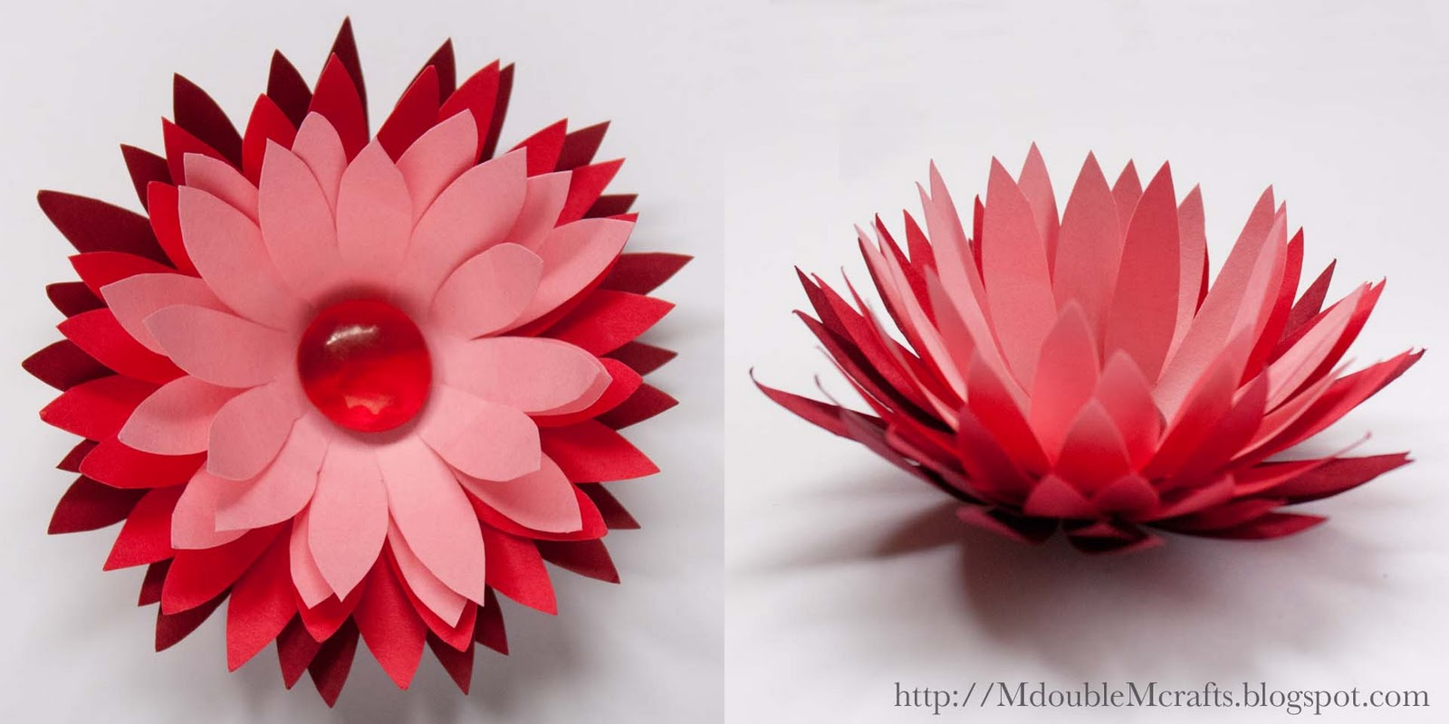 M double m ombre water lily paper flower tutorial ombre water lily paper flower tutorial izmirmasajfo Gallery