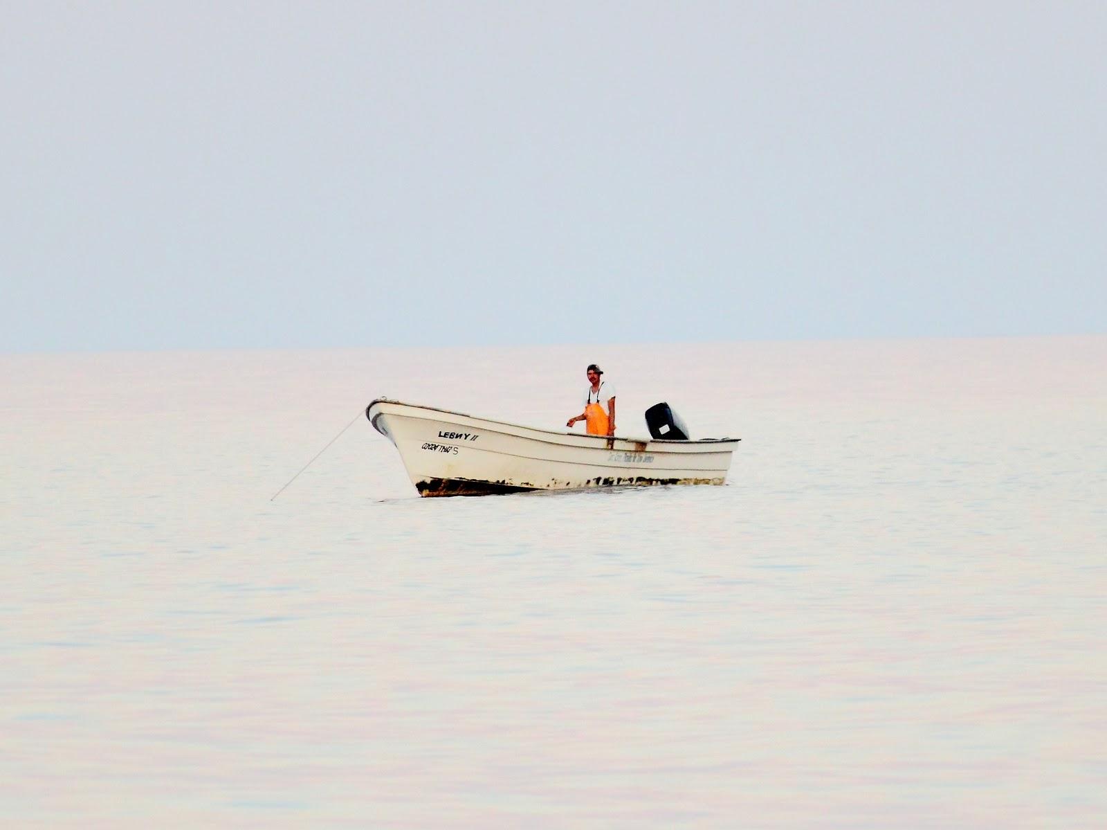 http://4.bp.blogspot.com/-8tvPKNX9B8o/T61RCchMcGI/AAAAAAAAChQ/TYQIAkKY-cw/s1600/fisher.JPG