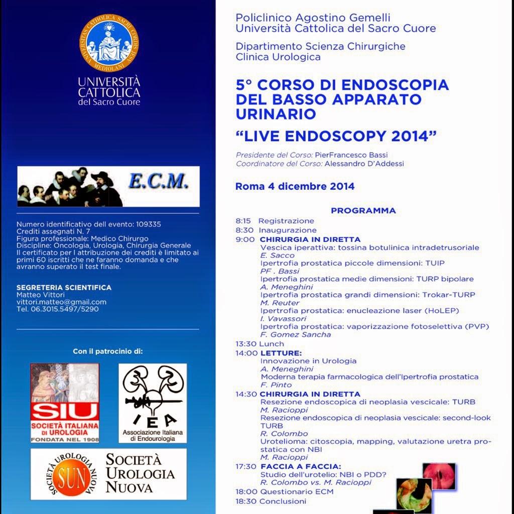 Dr Fernando G³mez Sancha English 2014
