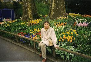 1999.4, 德国花岛 Mainau 。(点击图片)