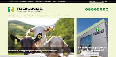 www.tsokanos.gr