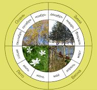 Природа круглый год