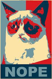 Grumpy Cat Says...