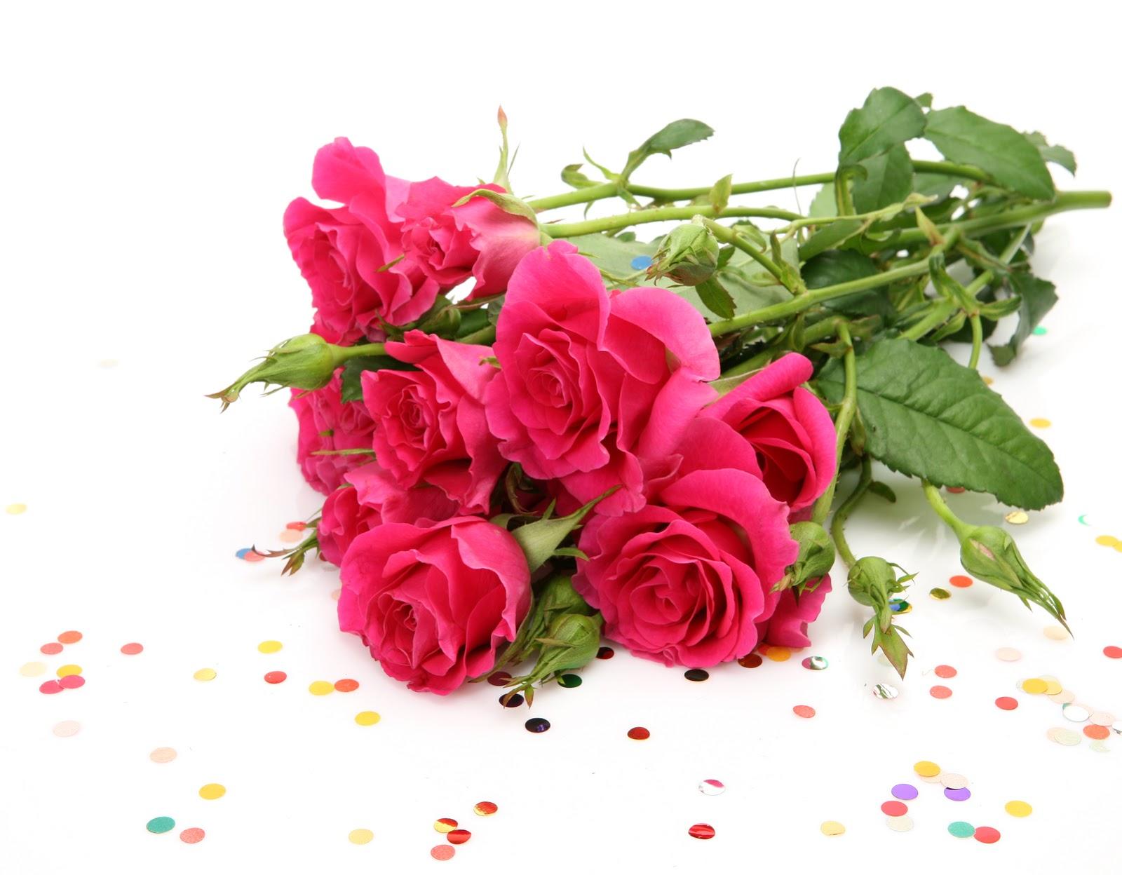 Banco de im genes para ver disfrutar y compartir - Rosas rosas hermosas ...