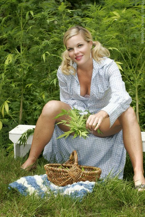 http://4.bp.blogspot.com/-8vECJ_Uj040/UoeIffzfy8I/AAAAAAAAFhg/ZEQRGKzvuZ0/s1600/Weed+Diva.jpg