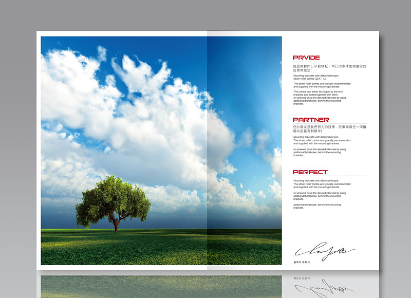 leogogo-design-SINZ-enterprise-brochure-design