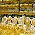 أسعار الذهب تعاود الارتفاع بزيادة 0,3% للأوقية