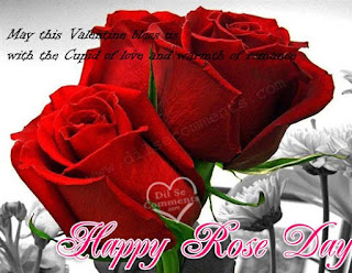 rose day images for whatsapp dp