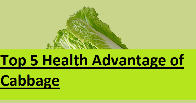 Top 5 Health Advantage of Cabbage