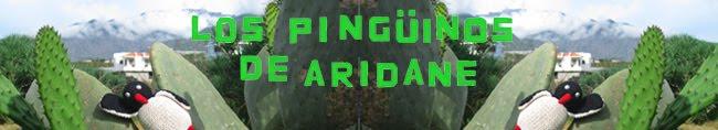 Los Pingüinos de Aridane
