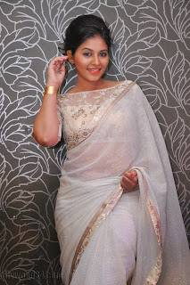 Anjali latest Glamorous pics in saree 027