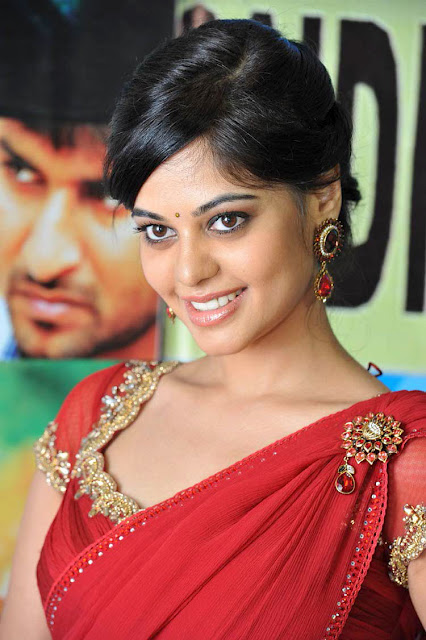 Bindu Madhavi In Full Saree 4
