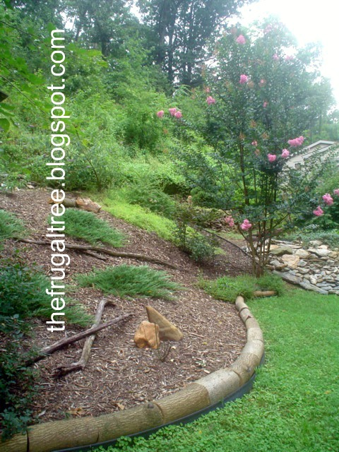 The frugal tree a decorative landscaping border for Unique landscape borders