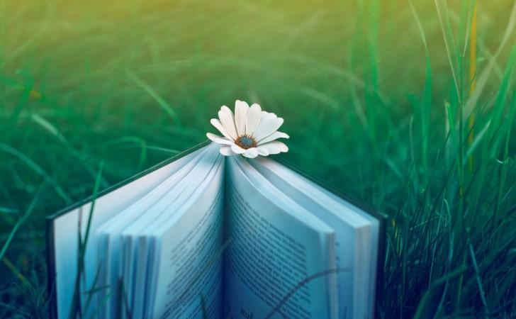 """""""Sempre imaginei que o paraíso fosse uma espécie de livraria."""""""