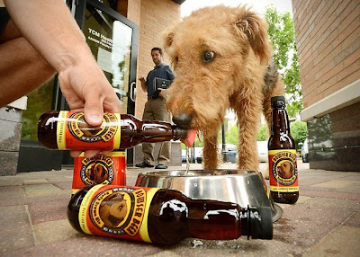 Cerveza para perros - Bowser Beer for Dogs