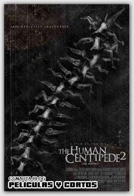 El Cien pies Humano 2