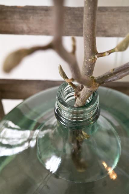 My loving home and garden: Gammelt glas og magnolia i stuen