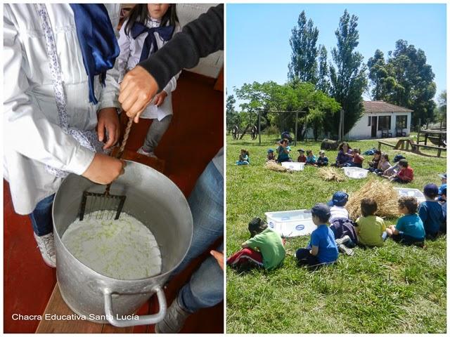 Preparando la cuajada - Trabajando con cereales - Chacra Educativa Santa Lucía
