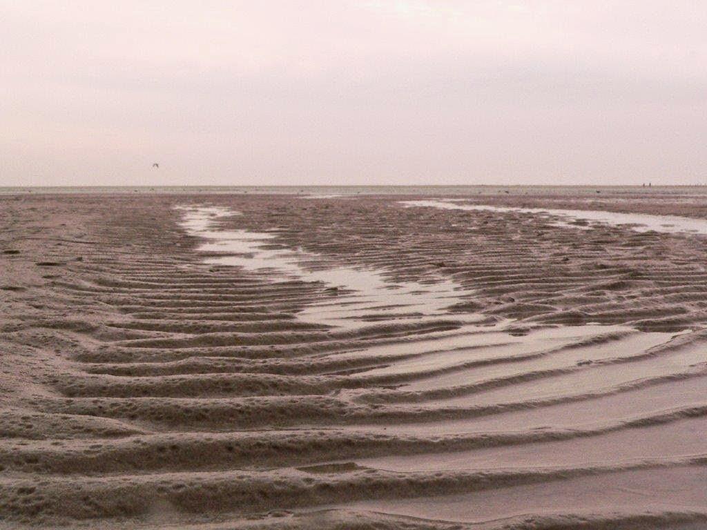 Wochenende Winter Urlaub Insel Meer Wasser Sand Strand