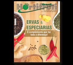 ENQUETE: O mercado de ervas e especiarias tem espaço pra crescer no Brasil?