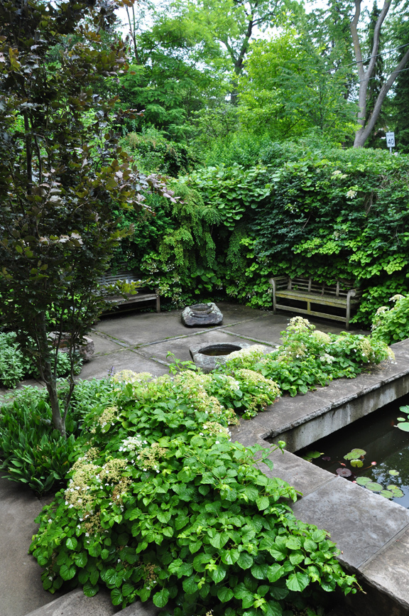 Three Dogs in a Garden Pin Ideas Small Water Features & Garden Ponds