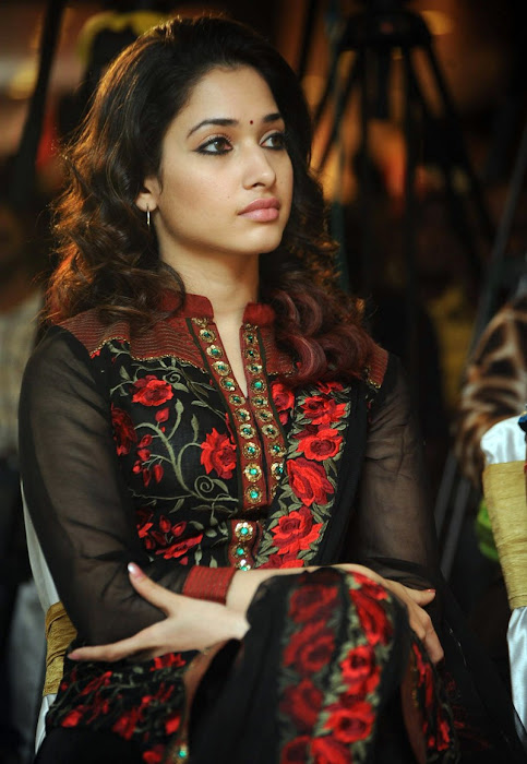 tamanna new from badrinath 50days event, tamanna new beautiful latest photos