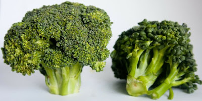 broccoli can prevent mouth cancer, broccoli, mouth cancer