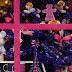 Un sapin violet - Rue de Sèvres