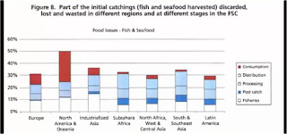 Fish and seafood waste by country