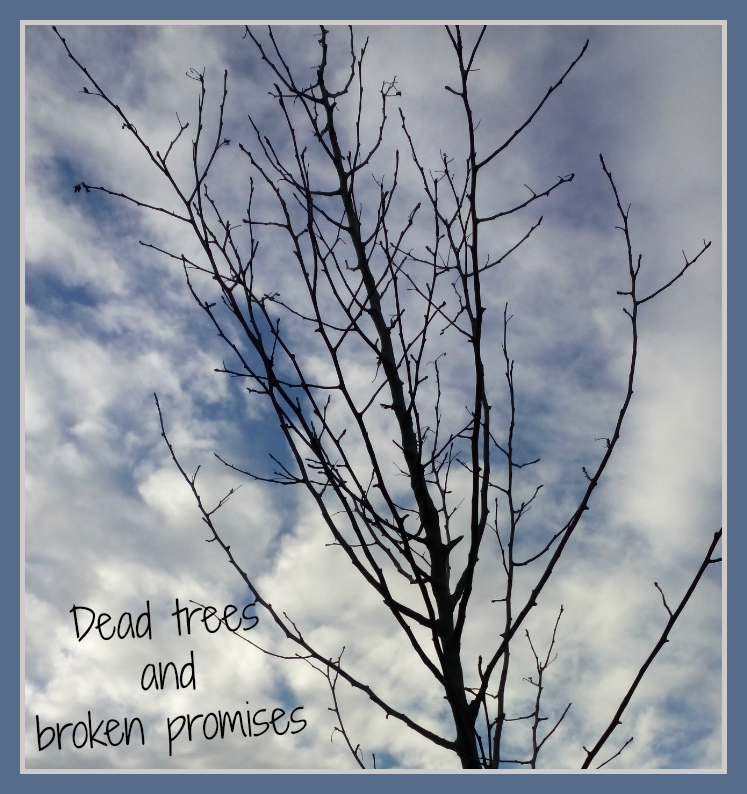 Dead trees and broken promises