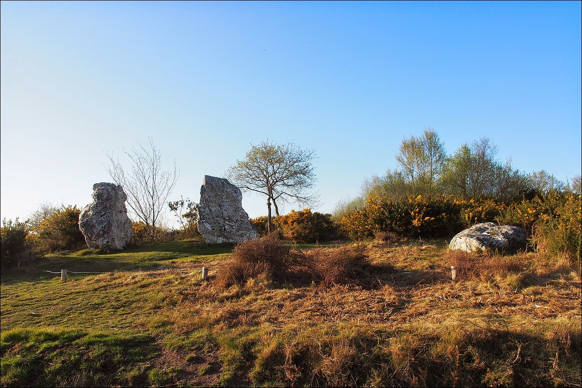 Mégalithes des  Landes de Cojoux , Saint Just