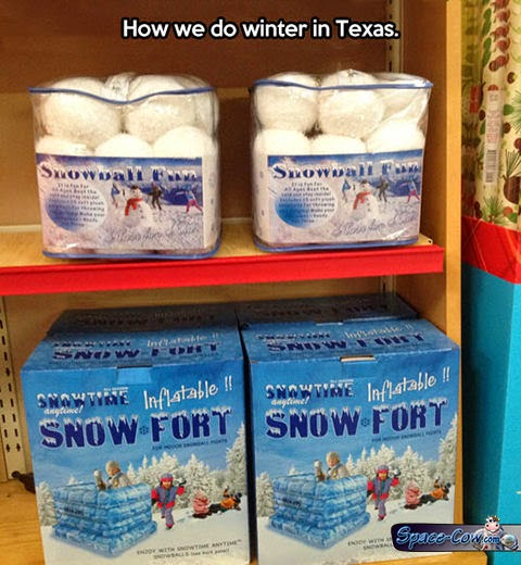funny things Texas winter