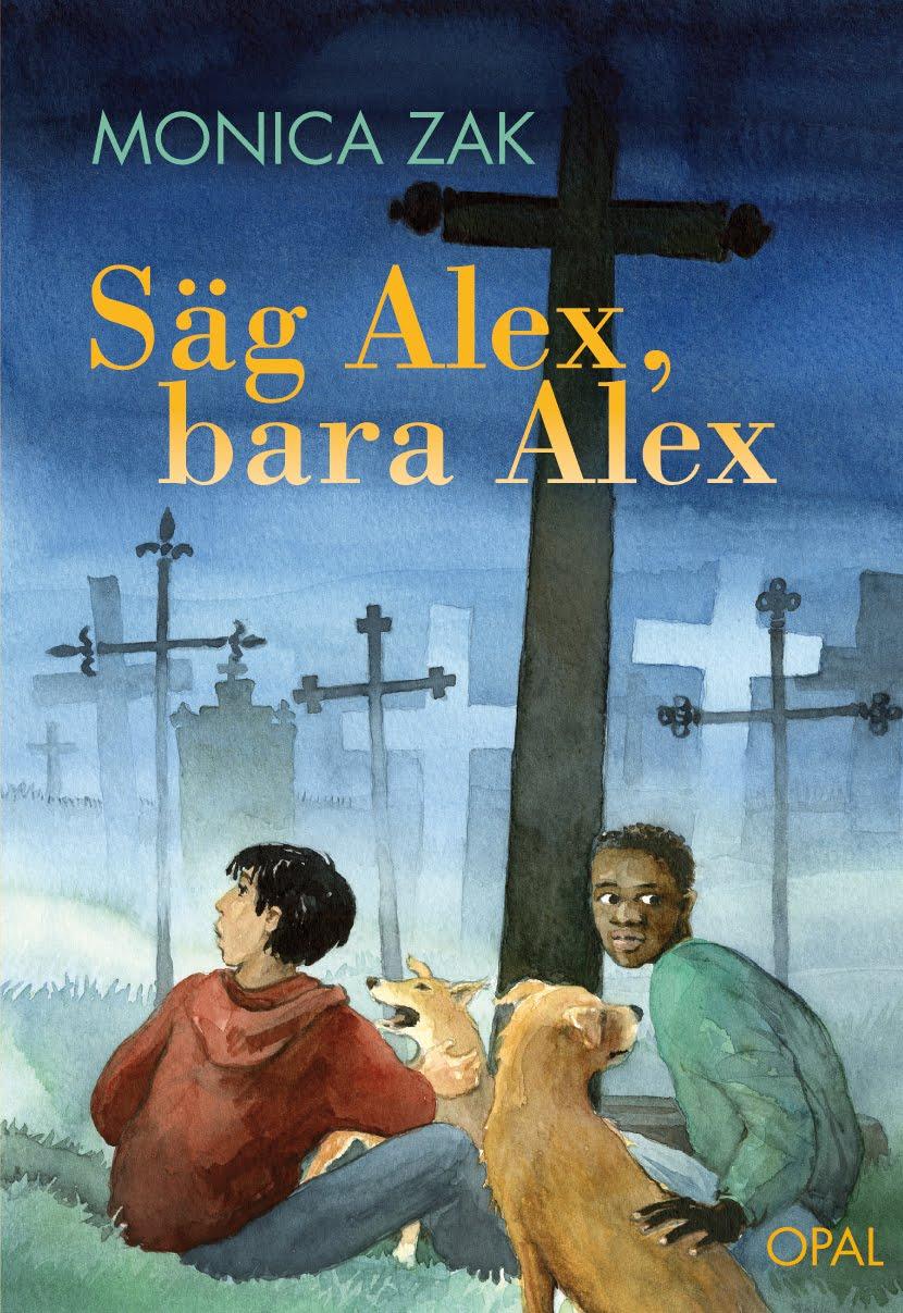 Linje 500: Säg Alex, bara Alex av Monica Zak