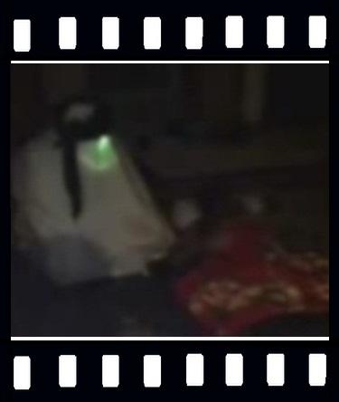 فیلم قرآن خواندن ، عکس امام زمان ، روح ، جن ، دیو ، غول ، اسلام ، دعا ، روضه ، راز و نیاز ، ترس ، وحشت ، خواب ،