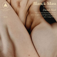 The Top 50 Albums of 2015: Blanck Mass - Dumb Flesh