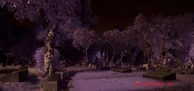 Mau Wisata Horor ke Kuburan? Ikuti 5 Tips Ini