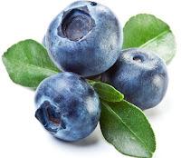 Manfaat Buah Blueberry Untuk Kulit