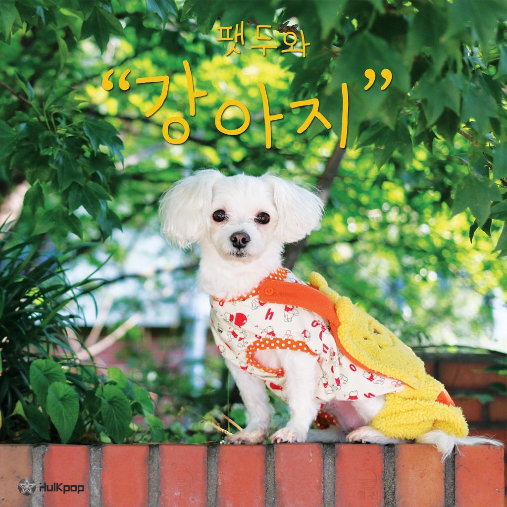 Fatdoo – 팻두와 강아지 – EP
