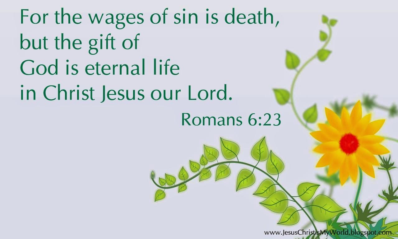 everlasting life bible verses quotes quotesgram