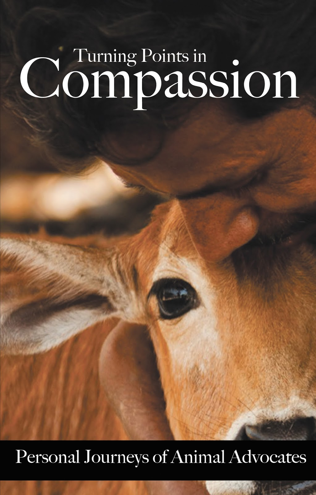 compassion imprisoned child essay contest Bible verses for compassion share tweet save the definition of compassion is a feeling of deep sympathy and sorrow for another who is hurting, in pain, or has misfortune and is accompanied by a strong desire to help the suffering.