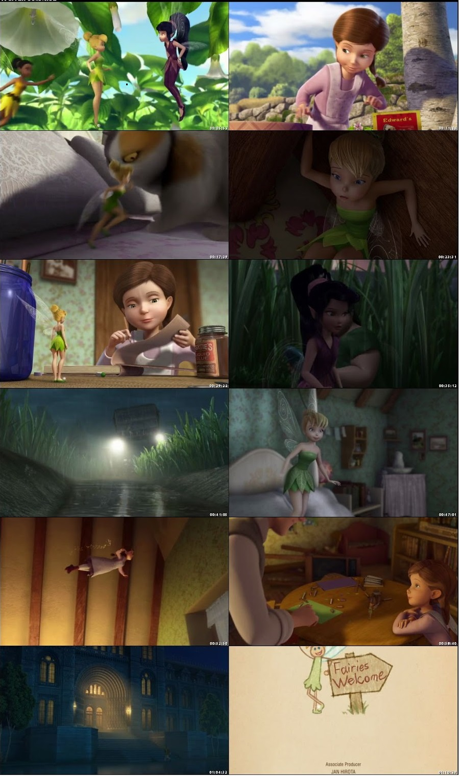 Screen Shot Of Tinker Bell and the Great Fairy Rescue 2010 In Hindi English Dual Audio Bluray