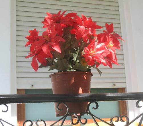ΙΤΕΑ : Το (θερινό) Χριστουγεννιάτικο στο μπαλκόνι της Μαρίας
