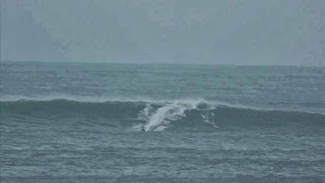 Izaro 03 01 2012