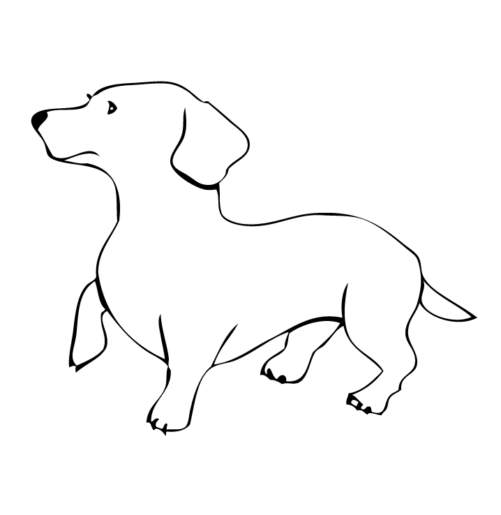 Gallery For gt Miniature Dachshund Outline