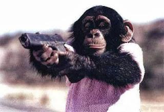Monkey-gun+(1)