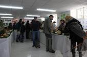 A escaseza non impediu que Pan de Raposo xuntase máis de 100 cogumelos nas Xornadas Micolóxicas